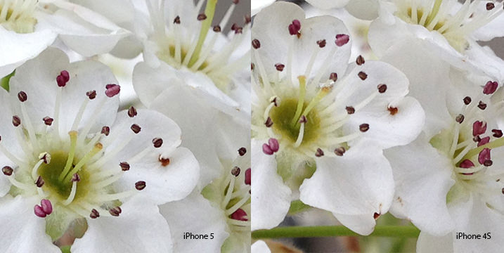 iPhone 5 vs iPhone 4S image comparison, 100% crop iPhone 5, iPhone 5 photo quality