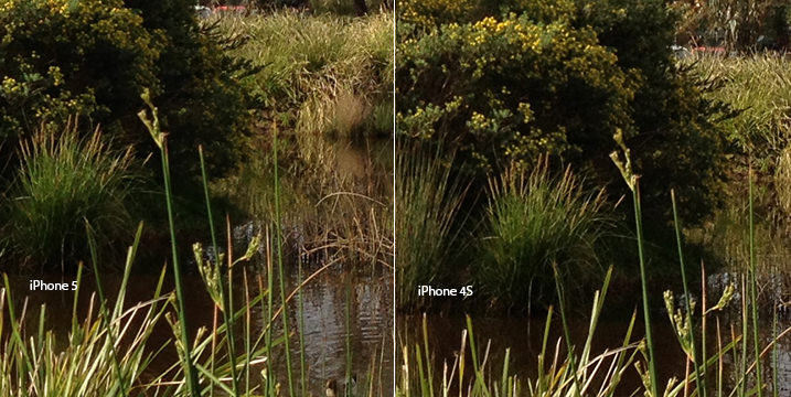 IPhone 5 Vs 4S Image Comparison 100 Crop