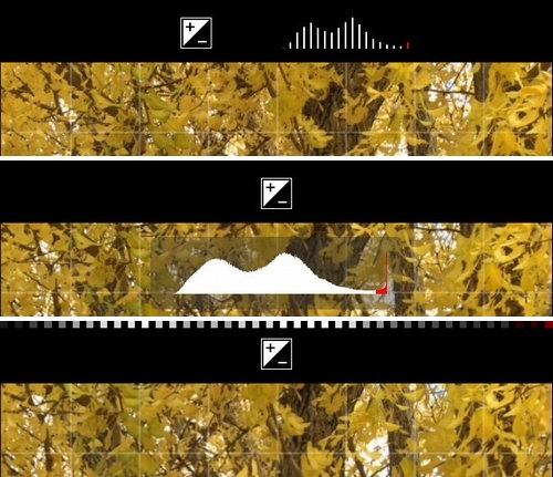procamera-8-v61-release-09