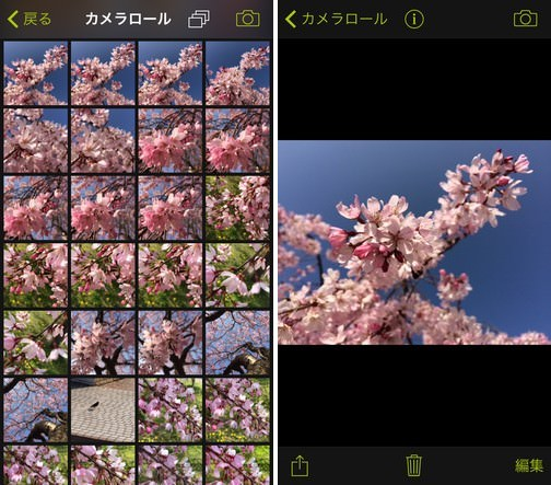 procamera-photocon-sakura-2015-instagram-05