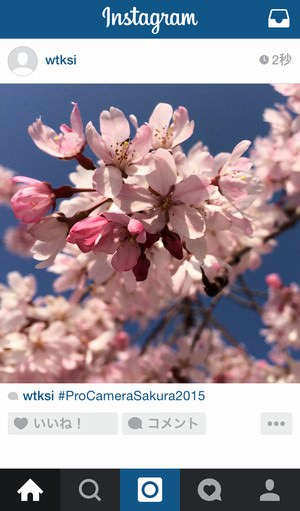 procamera-photocon-sakura-2015-instagram-09