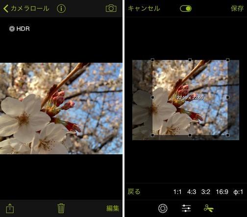 procamera-photocon-sakura-2015-instagram-10
