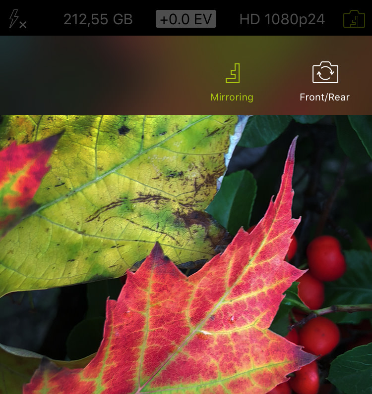 ProCamera_Mirroring_Options_Screenshot