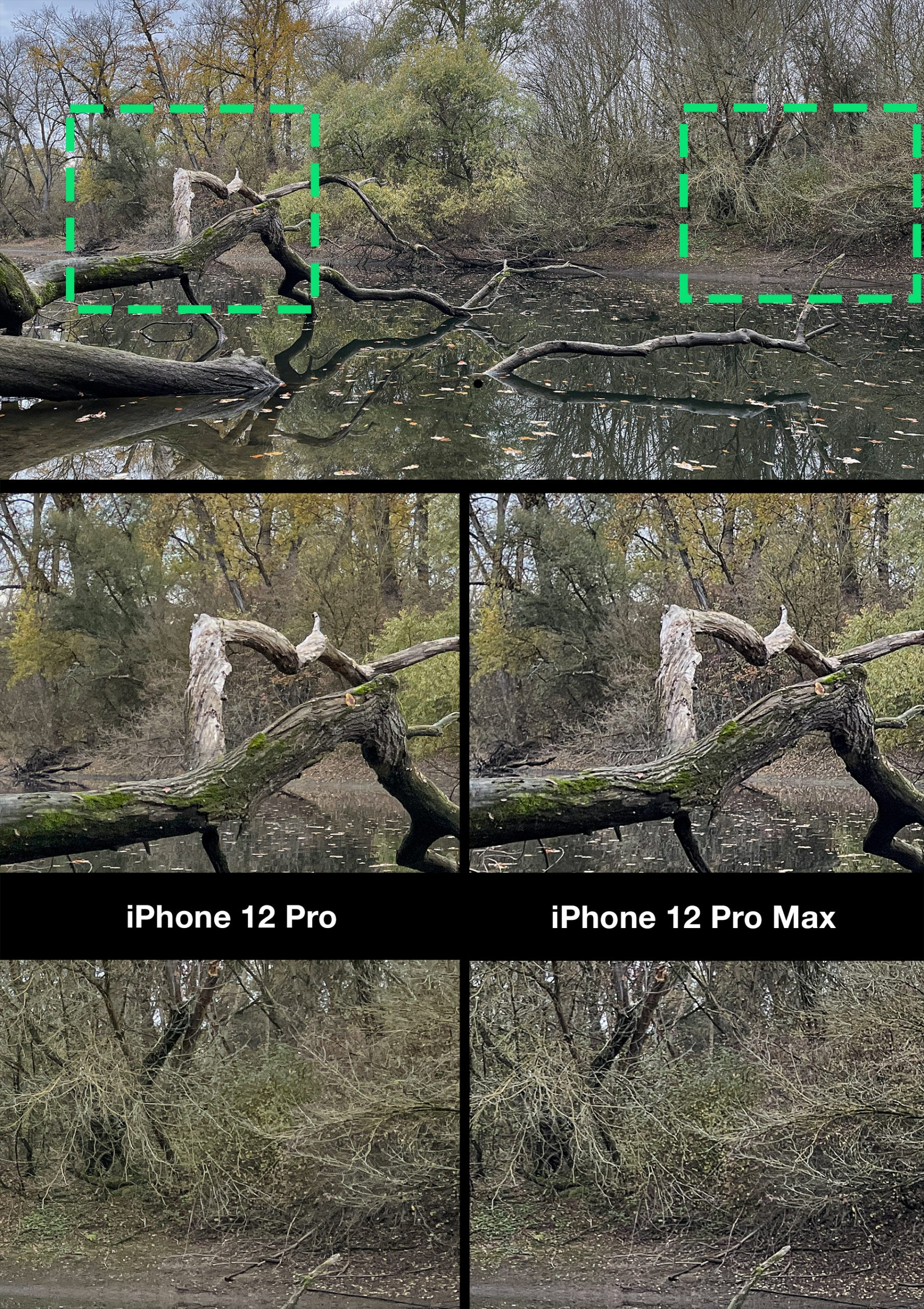 iPhone 12 Pro & iPhone 12 Pro Max: ProCamera + HDR