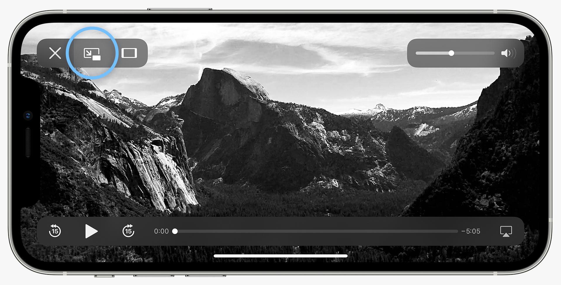 ProCamera-Picture-in-Picture-Mode-Screenshot